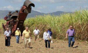 Agricultores-eeuu-en-Cuba